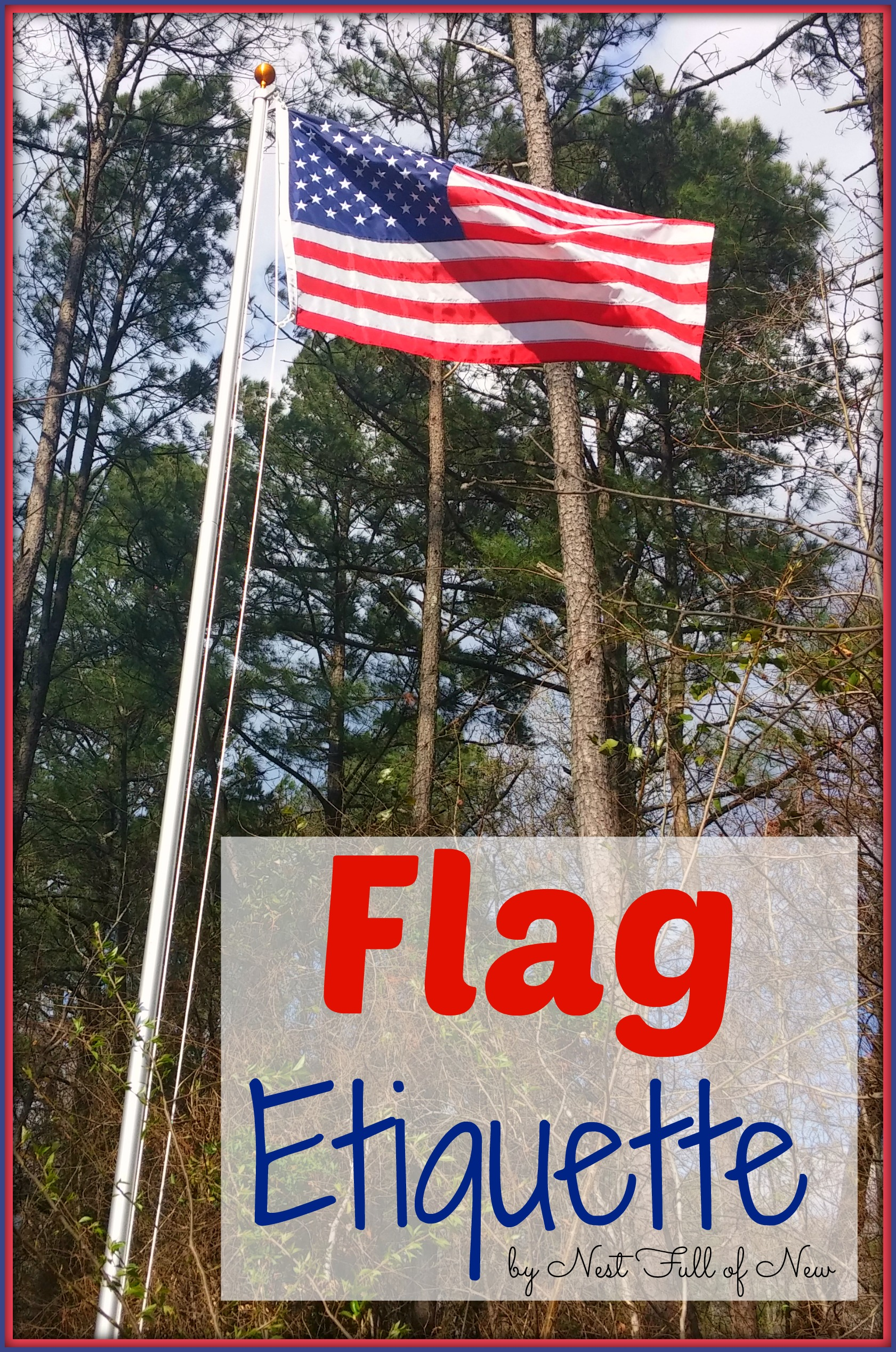 american flag etiquette nest full of new