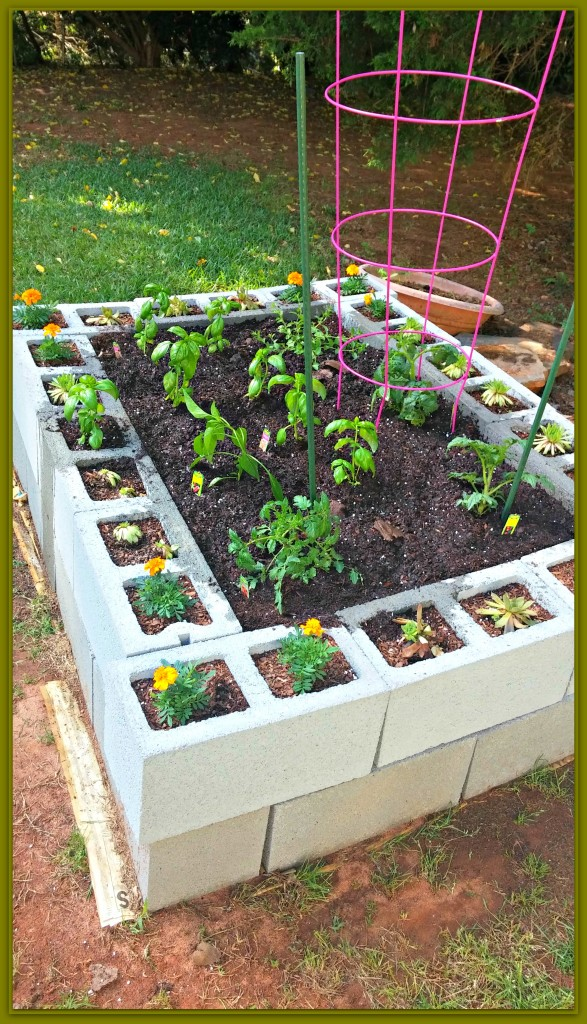 Create your own raised bed garden nest full of new - What to put under raised garden beds ...